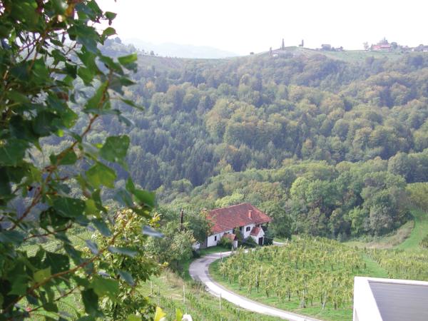 Bauernhof im Weinberg